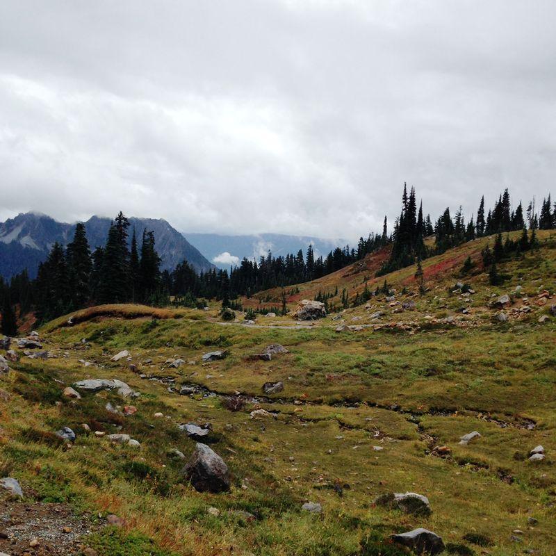 Mt Rainier Beautiful Hike