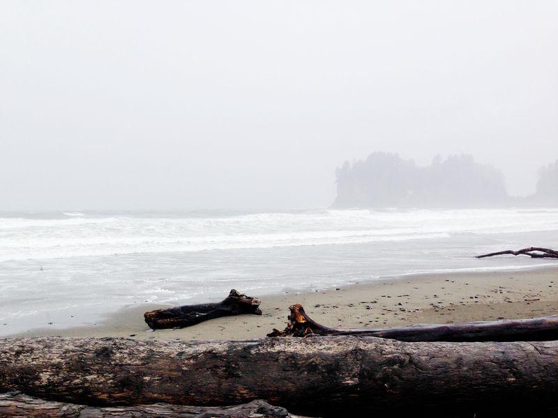 La Push Beach in Forks Washington