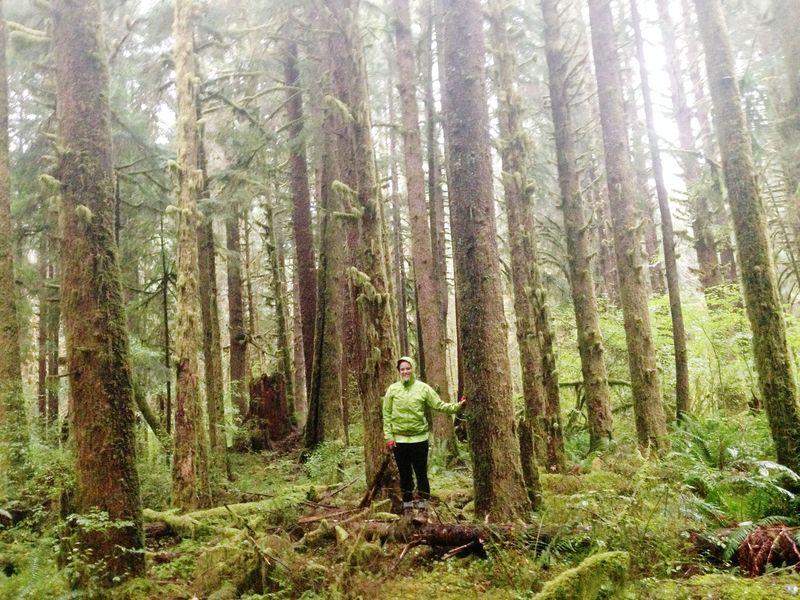 Hoh Rainforest on the Olympic Peninsula